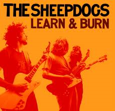 THE SHEEPDOGS-Learn And Burn