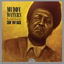 MUDDY WATERS-Mississippi Waters Live